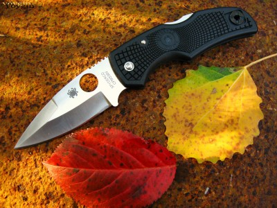 Spyderco Native Knife Wallpaper